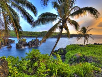 Moet ik naar Hawaii verhuizen?